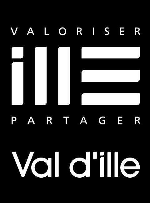 Logo CCVI